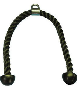 Triceps cord