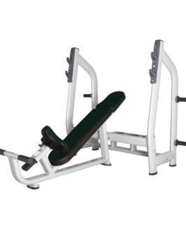 Olympische Schuine Bench Press Bank Pro